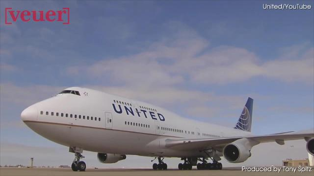 United Airlines To Resume Petsafe Program With New Policies And Rules