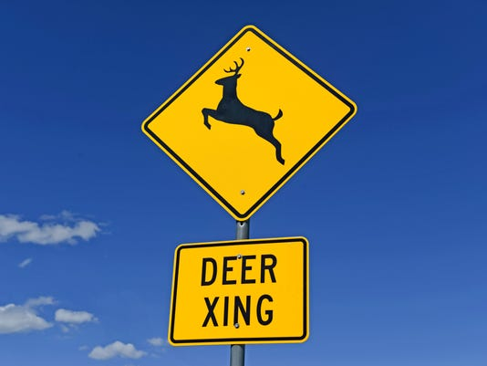 Deer crossing warning sign on road