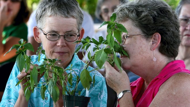 "The South Texas Botanical Gardens & Nature Center, 8545 S. Staples St., will host ""Christmas in July Herb Seminar"" from 10 a.m. to noon Saturday, July 29. Nueces Master Gardener Deb Holliday and fellow ""herbies"" teach you to grow and use herbs for holiday meals, and provide other fun herb recipes to spice up your buffet for guests. Cost: Class included in general admission; members free. Information: 361-852-2100, www.stxbot.org."