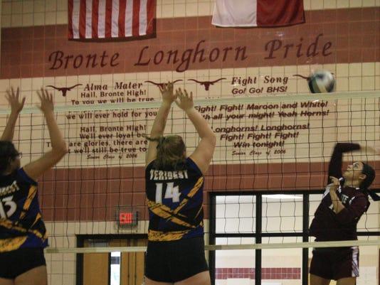 Bronte-Volleyball-2017-Davis.JPG