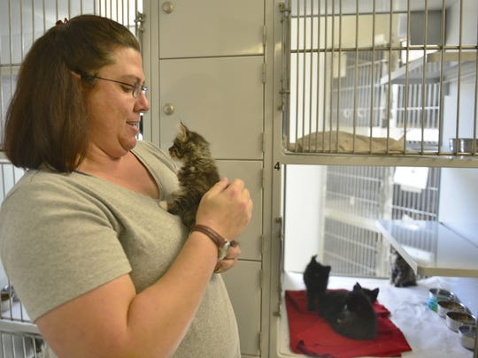 Tammy Burrows interacts with cats at the Tulare Animal Control Shelter.