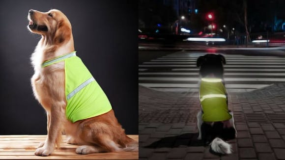 What a bright idea!