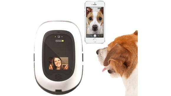 Tech products for your dog