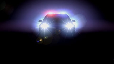 Police recovered a stolen vehicle and arrested two people suspected of stealing it and several others at a boat launch in Saranac early Wednesday morning.