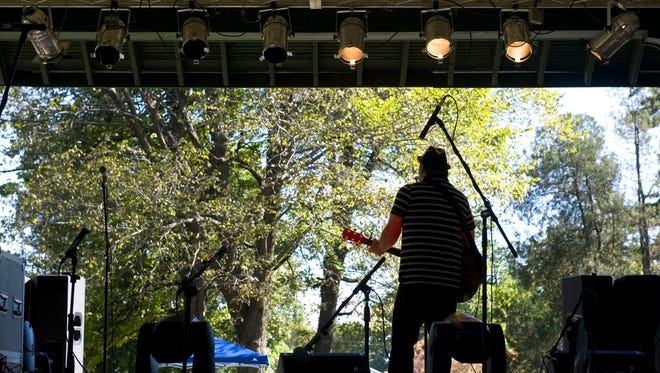 Troy Miller entertains the crowd with original and cover tunes at the 2014 Parks Fest at Garvin Park.