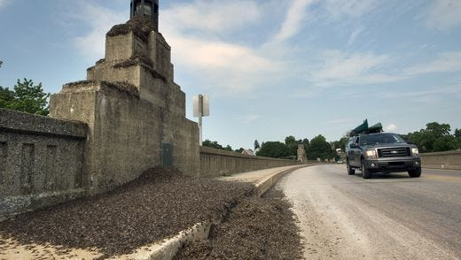 These are the piles of mayfly carcasses that covered the Route 462 bridge last year.