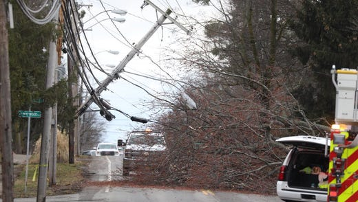 A tree took down a utility pole on Westfall Road just south of Maywood Drive in Brighton.