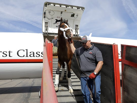 The Todd Pletcher trained Prince Lucky deboards the flight to El Paso Wednesday at Atlantic Aviation at the El Paso International Airport. Prince Lucky will run in the 2018 Sunland Derby on Sunday.