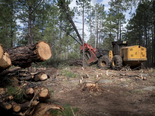 The Four Forest plan — or 4FRI — was intended to thin
