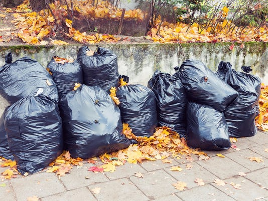 Plastic garbage bags full of leaves at autumn
