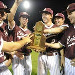 The Henderson County Colonels celebrate their 5-3 victory over Union County in the 6th District tournament finals at Henderson County High School in Henderson, Ky., Tuesday, May 24, 2016.