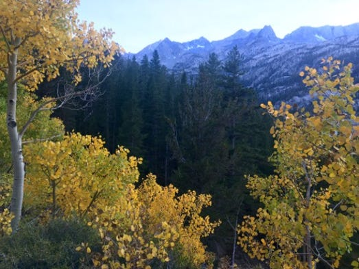 Changing leaves frame the High Sierra at dusk.