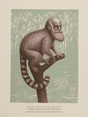 """Lemur Darwinus"" by Beauvais Lyons on display at Milwaukee Institute of Art and Design's ""Just the Facts"" exhibit is part of a series of scientific drawings of fake animals."