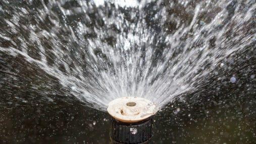 sprinkler head watering in garden.
