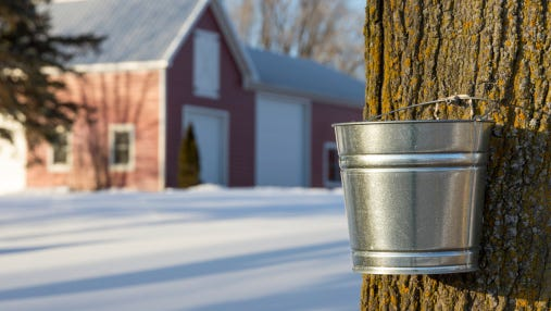 The public is welcome to attend a free session on backyard maple sugaring.