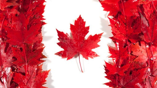 Being the good neighbor it is, Canada started the #TellAmericaItsGreat campaign. Oh Canada.