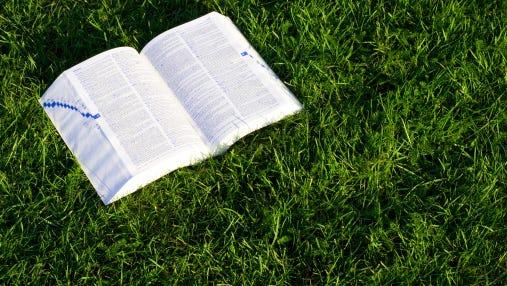 Open book on green grass 2