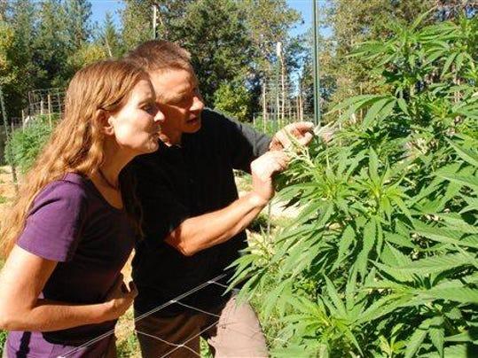 Legal Marijuana-Orego_Read