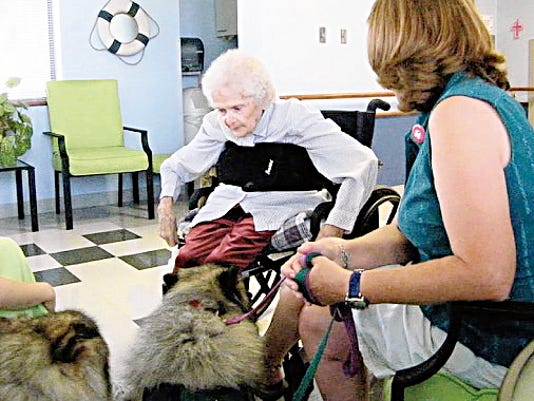 Registered therapy dog Sadie has a particular affinity for nursing home patients.