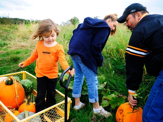 Area farms like Flinchbaugh's Orchard & Farm Market, Smyser's Farm and Barefoot Farm offer pumpkin-picking in the fall.