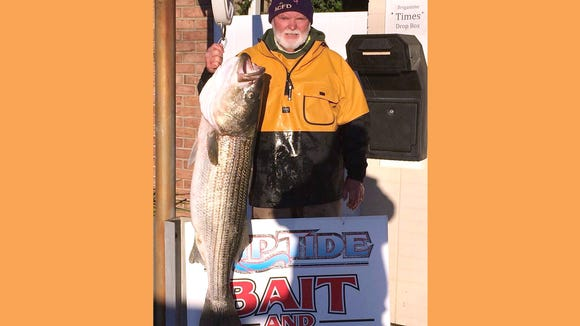 Paul Lavigna with a 48 inch, 42 pound striper that he caught caught in the Brigantine surf. He was using a Sebile Magic Swimmer.
