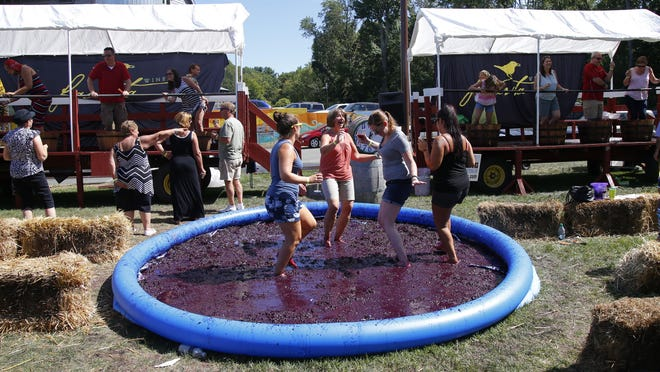 Megan Paterson, Joanne Paterson, Christina Caiafa and Melissa Caiafa stomp grape during a wine festival Sunday at Laurita Winery in Plumsted.