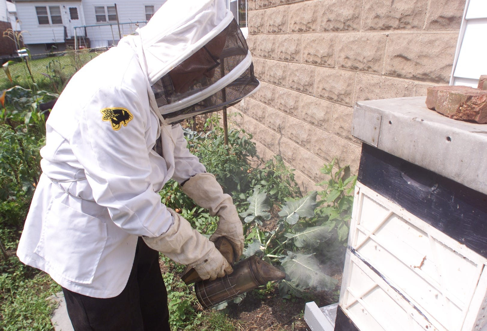 Paterson Beekeeper Tom Fuscaldo. Tom Fuscaldo Keeping His Bees In His  Paterson Backyard.