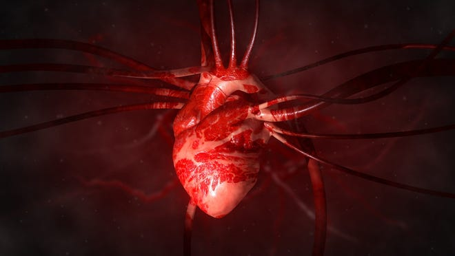 New evidence suggests the coronavirus has lasting impacts on the heart, raising alarm for cardiologists who have been concerned about potential long-term heart injury from COVID-19.