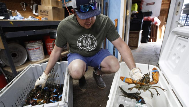 Fisherman Eric Pray packs lobsters in Portland, Maine. Pray was one of many fishermen and farmers who have pivoted quickly to sell to directly to consumers after the coronavirus shutdown cut out usual sales options.
