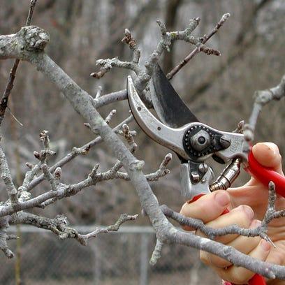 Hand pruners