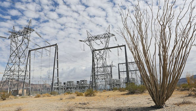 An ocotillo sits under large transmission lines that run along the I-10 corridor about 45 miles east of the Coachella Valley on Oct. 8, 2014.