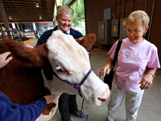 Sandra Tait, right, smiles while petting Red Box, a Hereford steer, with Cascade alumna Payton Hartsell holding him during the 150th Oregon State Fair, Monday, August 31, 2015, in Salem, Ore. Cascade FFA students have been raising Red Box with the intention to donate his beef to the Marion-Polk Food Share.