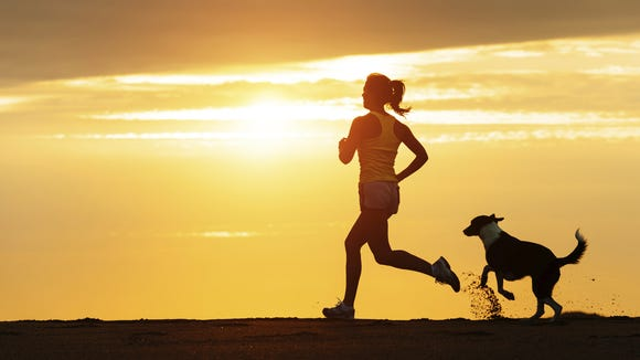 Dogs can be great running companions, but during running races, it can create a hazard for other runners as well as the dog.