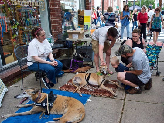 NJ Greyhound Adoption Program (NJGAP) is hosting a Meet and Greet in front of Barkley's Gourmet Marketplace during the first Flemington Car Show of the season on Saturday, May 26.