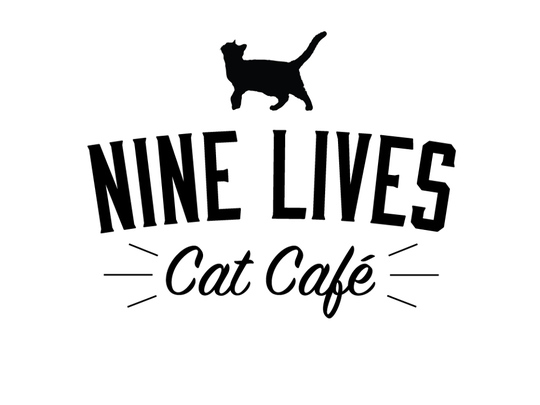 Nine Lives Cat Cafe will open at the end of the summer in Fountain Square.