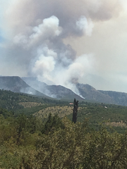 Smoke from the Highline Fire rises from the Tonto National