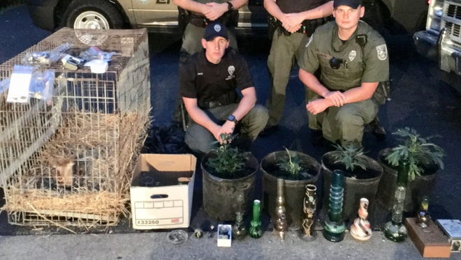 Conservation officers pose with a baby deer, marijuana plants and drug paraphernalia that was seized.