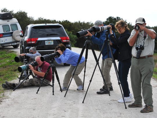 Photographers are poised to capture many of the beautiful birds that can be seen at the Ritch Grissom Memorial Wetlands.