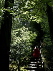 A woman climbs stairs out of the Natural Garden at the Portland Japanese Garden.
