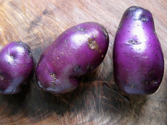 Potatoes-35.JPG