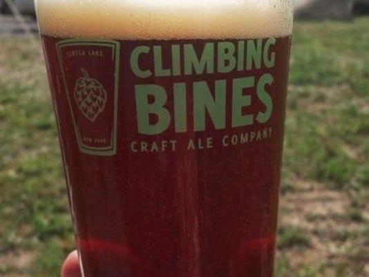 climbingbines.jpg