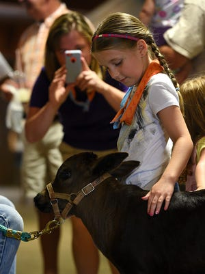 Emily Perdue of Salisbury pets a month-old mini-cow named Outlaw at the 2015 Wicomico County Fair.