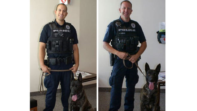 Gilbert police K-9 brothers – Lenz and Bono – arrived from a training program in Holland in late May, ready to sniff out crime with their other brother, Murphy.