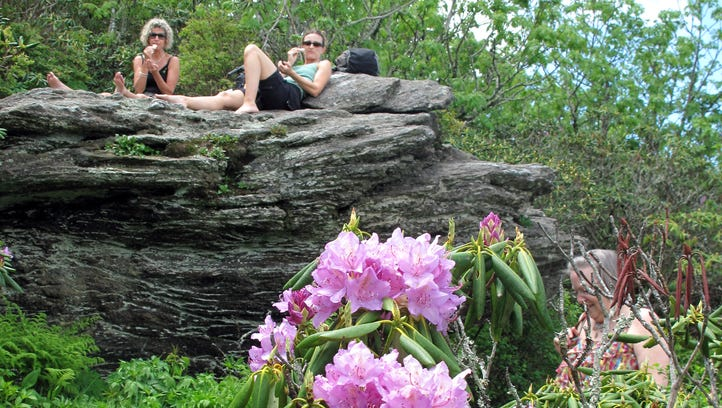 Hikers eat lunch on rocks above blooming rhododendron on the Craggy Gardens Pinnacle Trail in this file photo. The Craggy Gardens area is now open on the Blue Ridge Parkway.