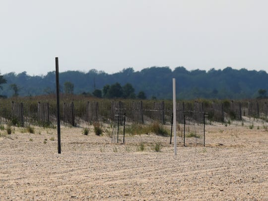 A fence enclosure aims to keep piping plover nests safe from predators.
