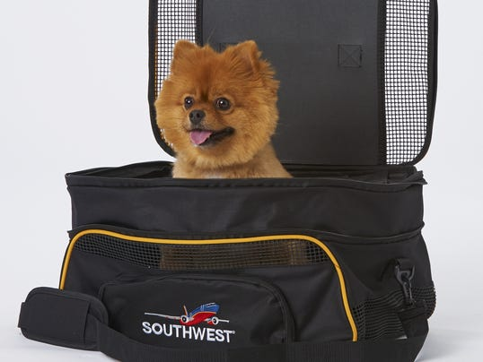 Your Say 1021 pets on planes