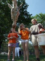 Students get hands-on experiences during these programs.