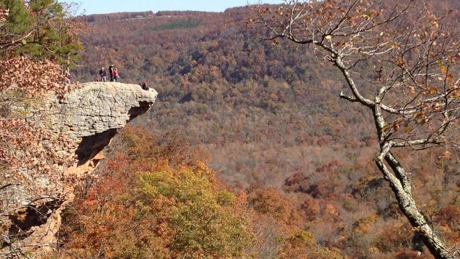 Hawksbill Crag on Whitaker Point Trail