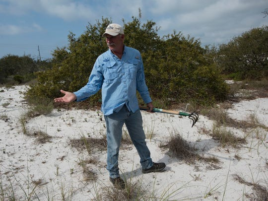 Rick O'Connor of Florida Sea Grant searches a wooded area, in Perdido Key for signs of Water Moccasins Thursday, April 19, 2018. Some residents of the Key, are reporting many sightings of the snakes around their Southwest Escambia County homes.