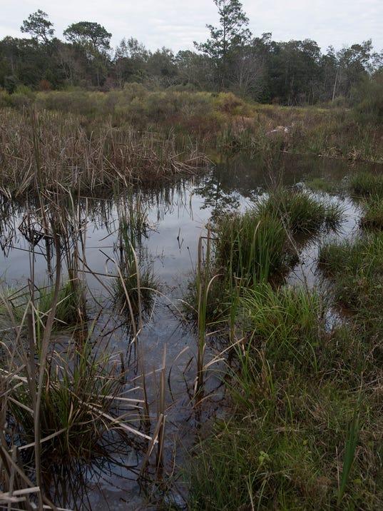 Willowbrook Lake-Repairs Needed